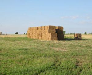 Keenesburg-CO-143-Acres-Irrigated-Farm_12-845x684-160923-57e5454c85d85.jpg