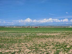 4 acres Pic 2-1.jpg