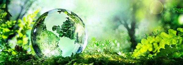 environmental-compliance_599x214.jpg