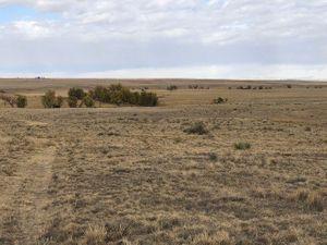 Land4-5f906890730e4-640x480.jpg