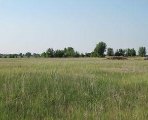 Keenesburg-CO-143-Acres-Irrigated-Farm_6-845x684-160923-57e5453b0af26.jpg