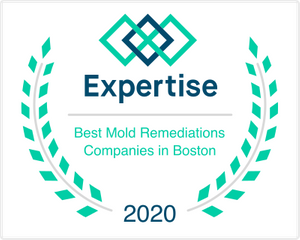 ma_boston_mold-remediation_2020.png
