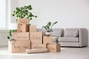 Boxes In New Home
