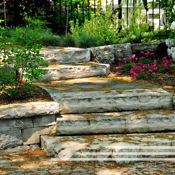 Stone steps with plants along the sides.