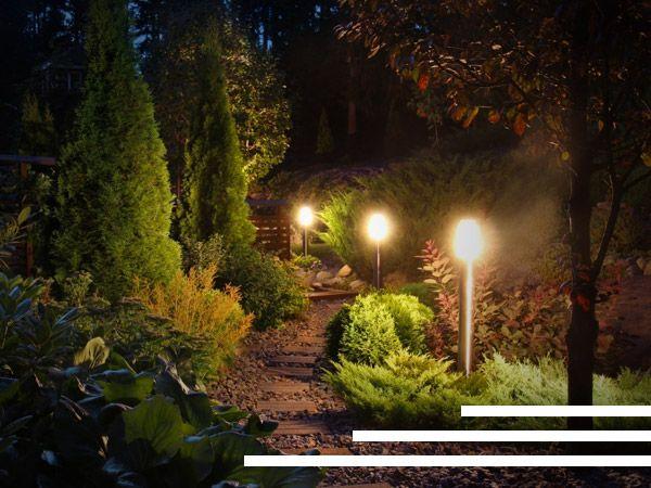 Night image of lit walkway through garden