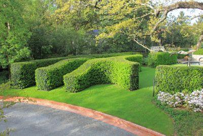 Jacobean_Renaissance_Garden (7).JPG