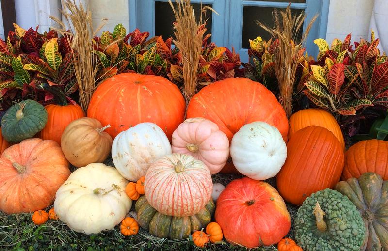 Fall Pumpkin Display.png