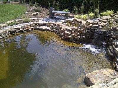 Pond-Large-209-800-600-80-5c8c1f5d2ad1d.jpg