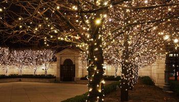 lights-5e8ded8266660.jpg