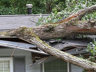 Photo of damaged roof