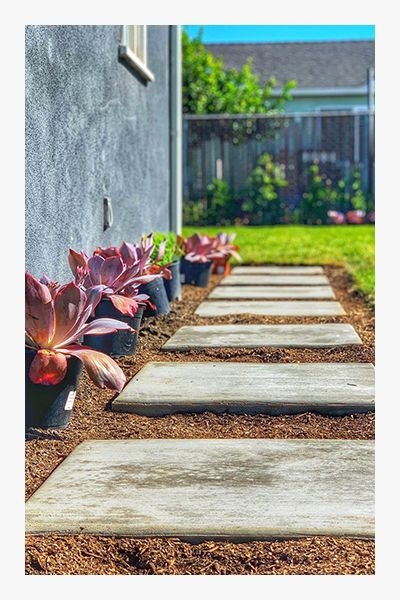 Image of pavers with succulents