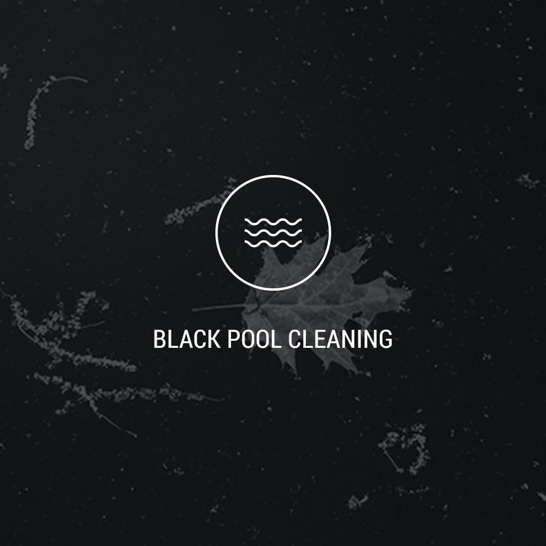 4 Black Pool Cleaning.jpg