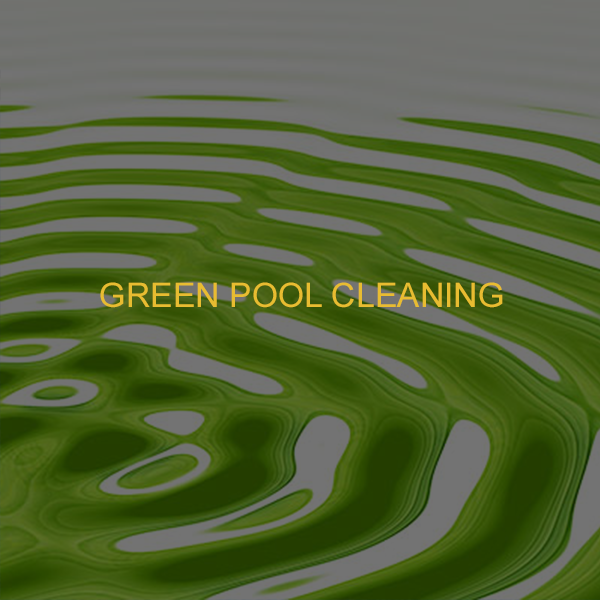 green pool cleaning.png