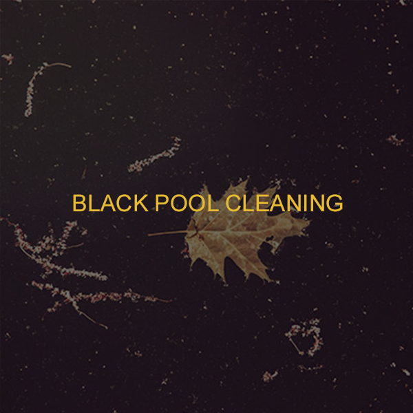 black pool cleaning.png