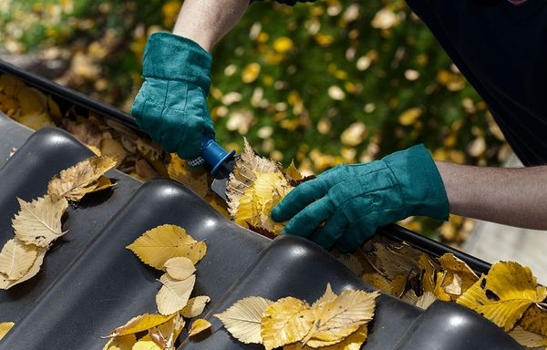 A man takes leaves out of gutters.