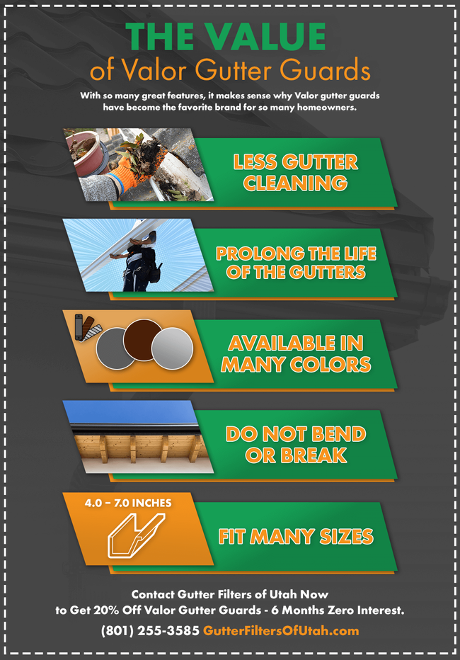 infographic - The value of Valor Gutter Guards (1).png