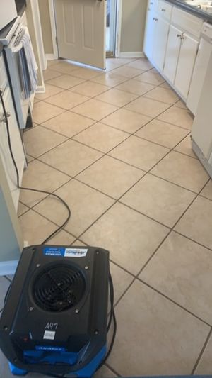 Kitchen Tiles After Cleaning