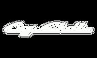 Big-Chill-Logo-1-300x131.png