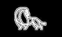 aslanconstruction-300x179.png