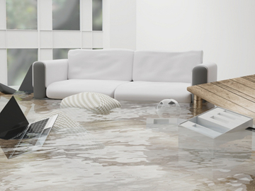 Flood_.jpg