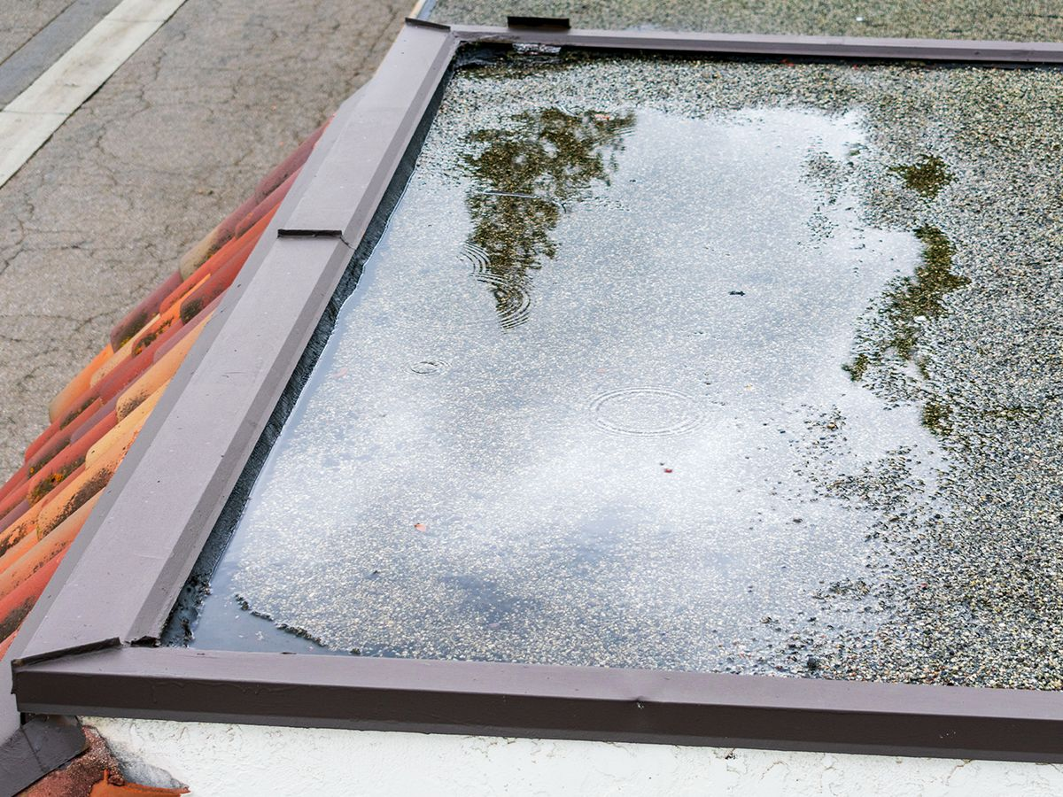 Pooling water and leaking roofs cause water damage in your home