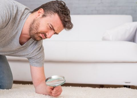 disgusted face looking through magnifying glass at carpet or rug