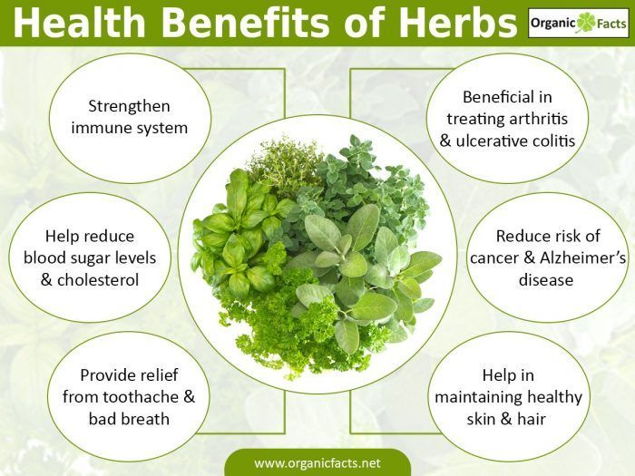 An infographic explaining the health benefits of herbs from Herbal Nail Bar in Naples and Fort Meyers, Florida