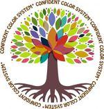 CCS-Logo.jpg