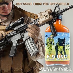 k9 unit Soldier 2.jpg