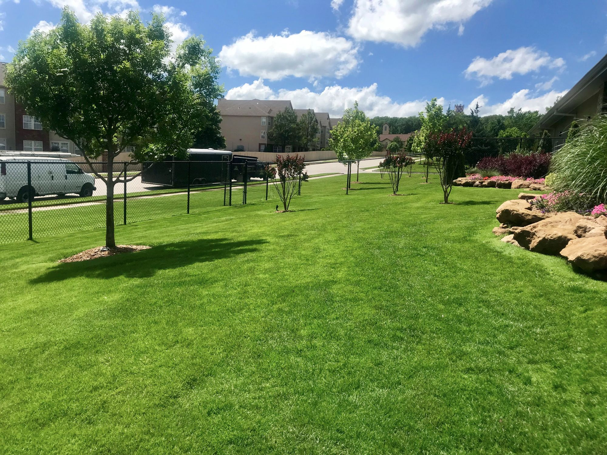 A green lawn.JPG