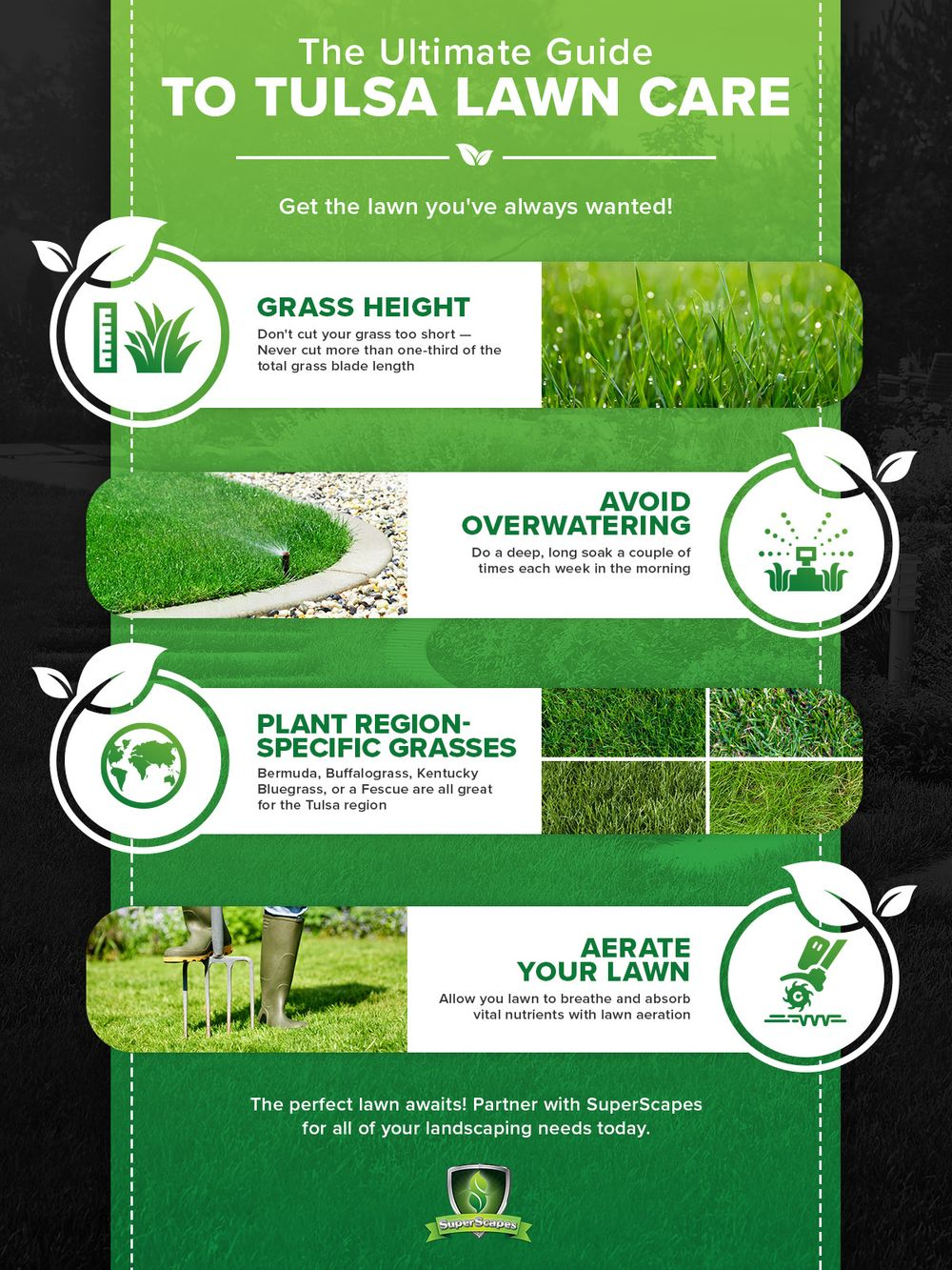 The Ultimate Guide To Tulsa Lawn Care infographic.jpg