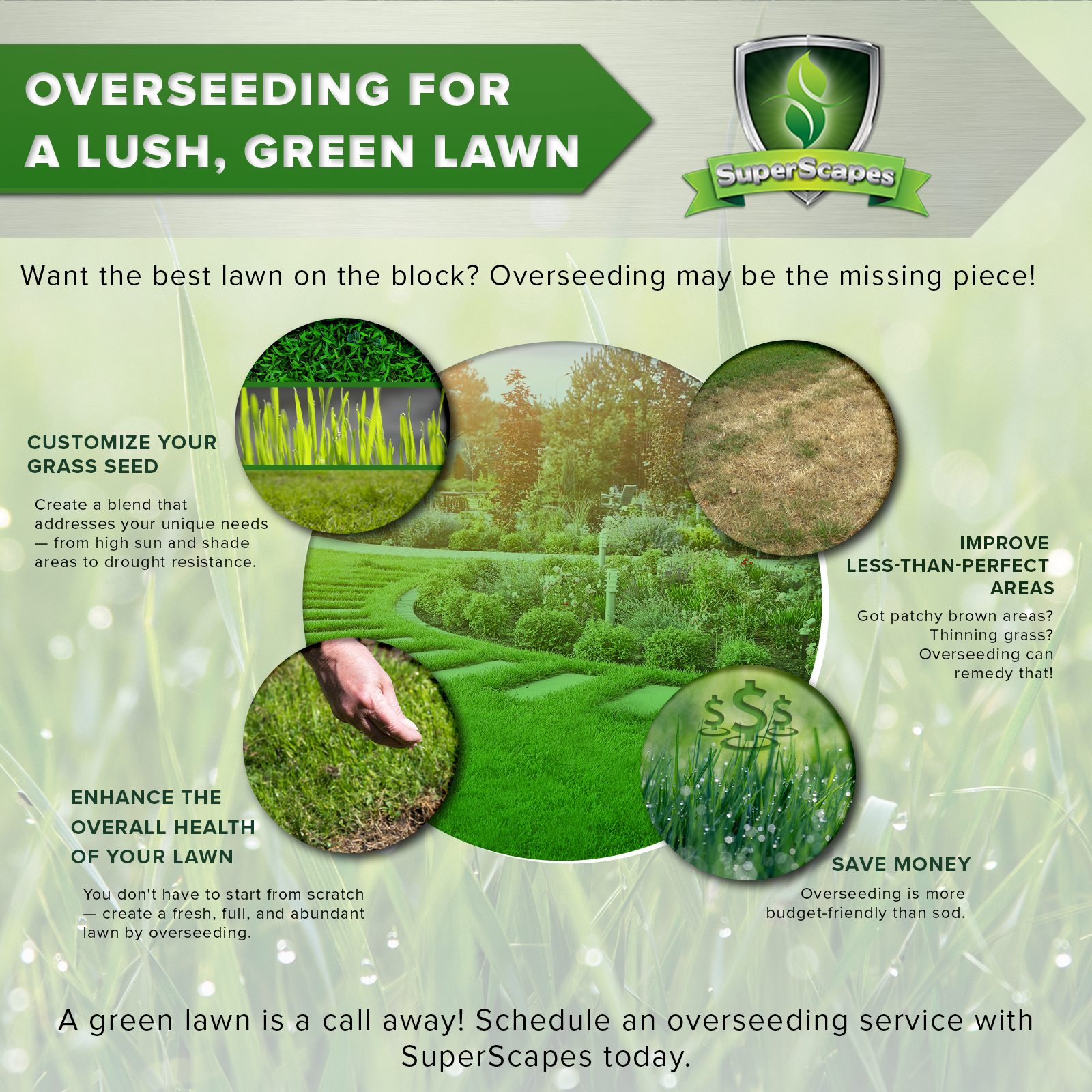 overseading blog infographic.png