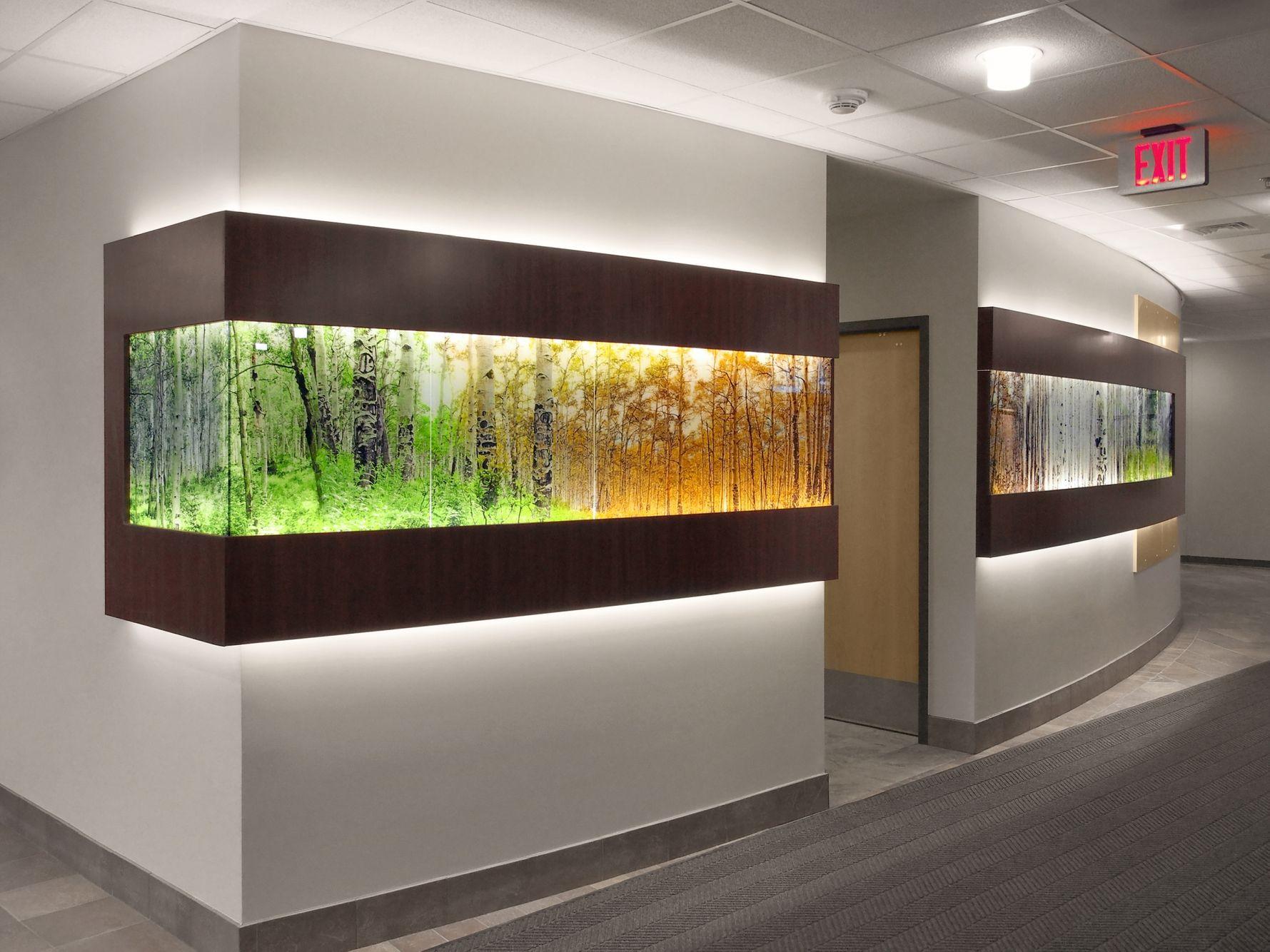 AVH HospitalEntry1.jpg