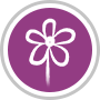 Round-Purple-Icon-02-161122-5834ce7dad3df.png