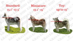 Alaskan Klee Kai Size Chart