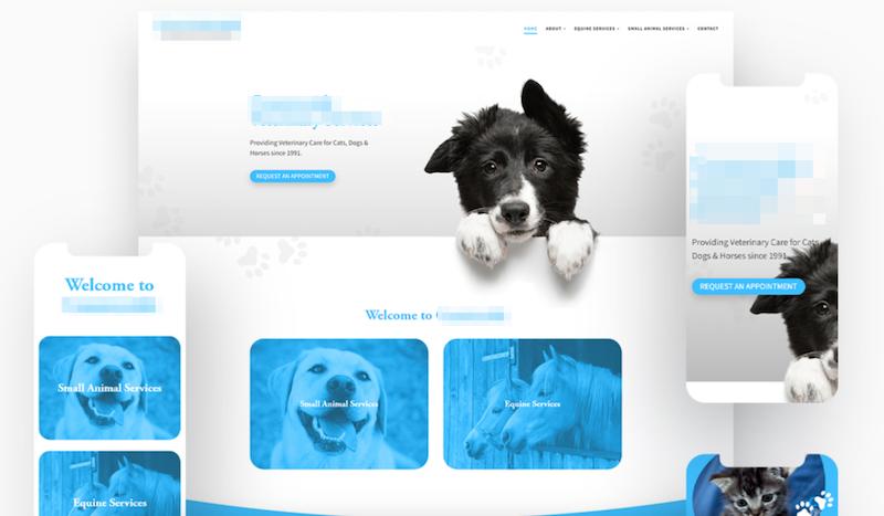 vet-clean-website-design.png