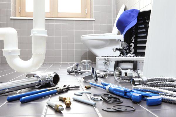 Toilet Repair Blog Image