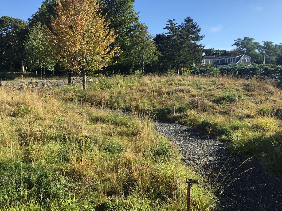 ANDLC - peastone walkway-meadow.jpg