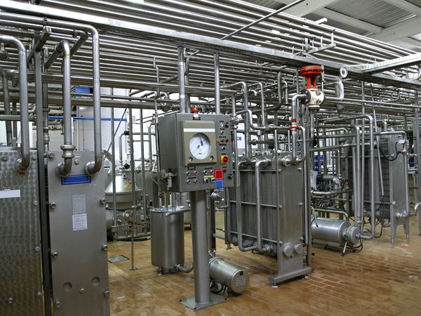 Stainless steel temperature control valves and pipes in modern dairy factory.